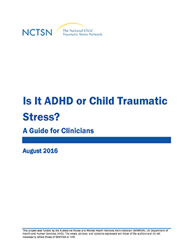Video On Impacts Of Trauma On Learning >> School Personnel The National Child Traumatic Stress Network